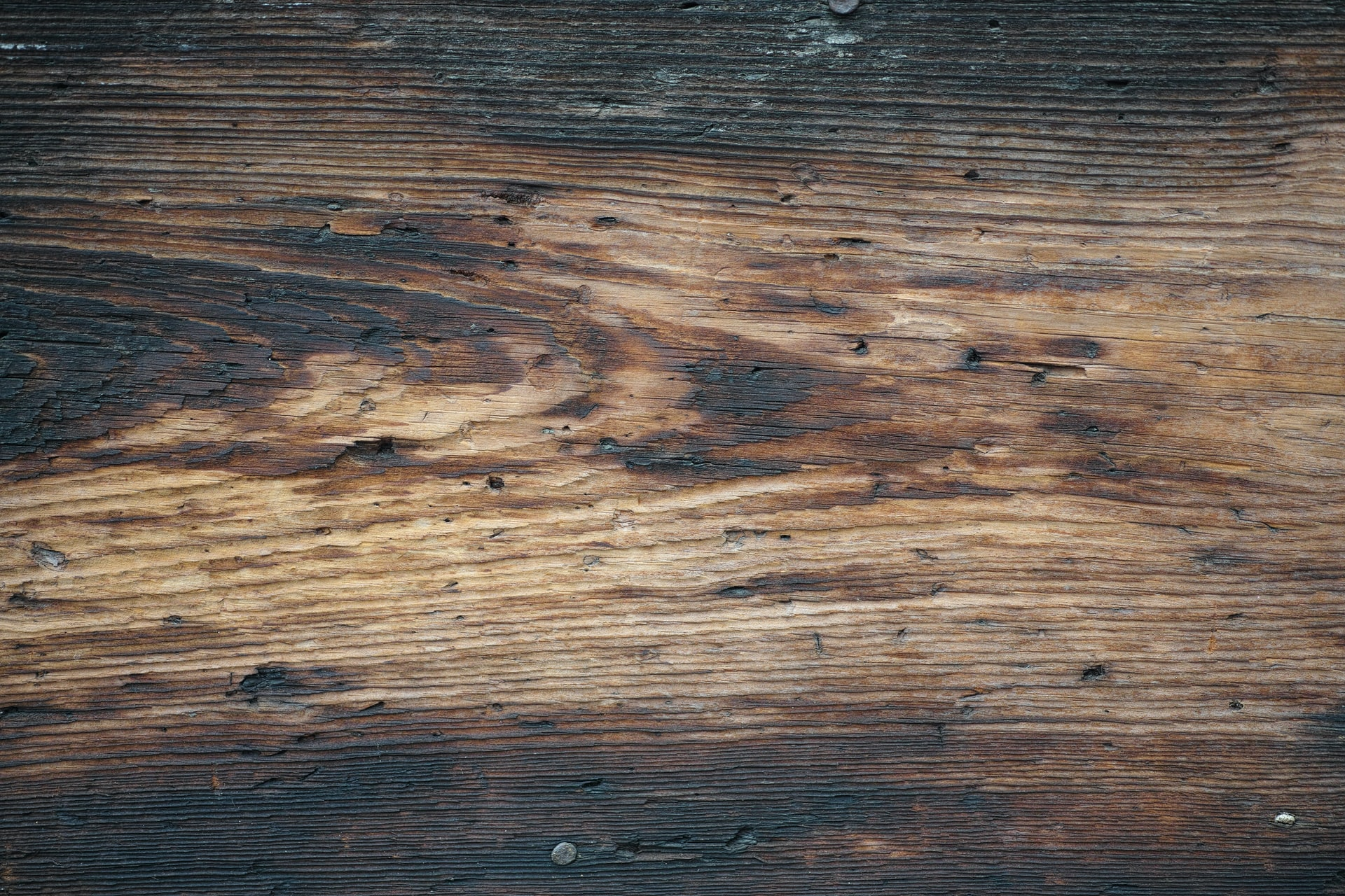 geflammtes Holz